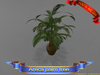 Areca palm tree-Freedom creations