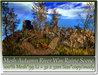 Mesh Autumn River Way Ruine Scene 99 Li=32x32m Size copy/mody