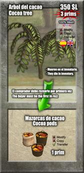 Cocoa Tree [G&S]