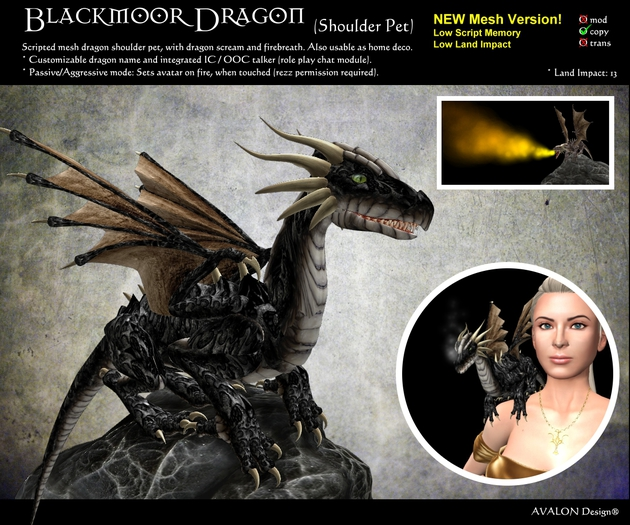 Blackmoor Dragon - Shoulder Pet
