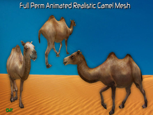 Full Perm Incredible Animated Camel HQ Mesh