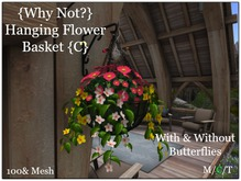{Why Not?} Hanging Flower Basket {C} -Boxed