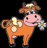 DFS Cow BW