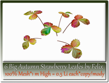 6 Big Autumn Strawberry Leafes by Felix 1m High=0.5 Li each c/m