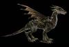 Dragon darkfall