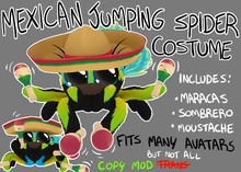 [ARTIFACT] Mexican Jumping Spider Costume