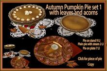 Autumn Pumpkin Pie Set 1