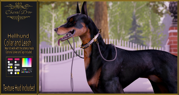 Cheval D'or - Hellhund - Collar and Leash.