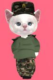 Lexxie Dinkies Camo Uniform