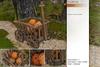Sway's [Hazel] Wooden Cart with Pumpkins