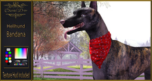 Cheval D'or - Hellhund - Bandana.