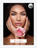 WEAR ~ The Face ~ Catwa - Antonia ~ SPF35 (Fiore Tone)