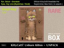 KittyCatS! Box .: Ocicat - Chocolate / Key Lime [F]7T:. New Born Kitten - July