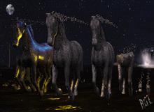 R.O.T. - horse dust metallic box