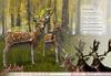 JIAN Fallow Deer Buck & Doe