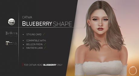Catwa Bento Head Blueberry Shape 1.0