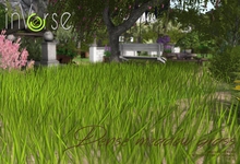 inVerse® MESH - Dense  grass meadow