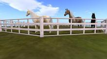 Round Pen Wood White Horse WHRH water horse teegle