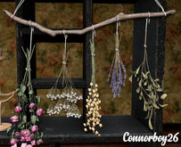 dust bunny . wiccan artistry . dried flowers . RARE