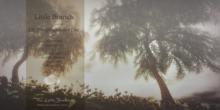 Weeping Honey Tree Animated 4 Seasons
