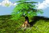 inVerse® MESH - Fantasy Tree #1