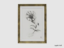 Apple Fall Gilt Frame - Sea Campion Study