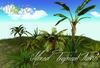 Mixed tropical Plants #1  BXD