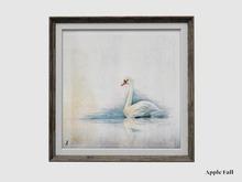 Apple Fall Original: Swan Study