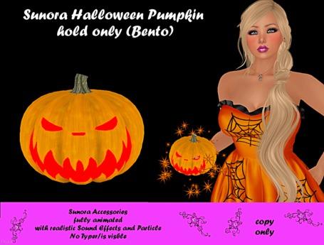 Sunora Halloween Pumpkin hold only (Bento)