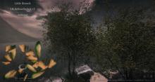 Yellow Orchidtree v2 Animated 4 Seasons