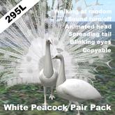 White Peacock Pair(copyable, feedable)