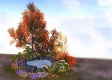 Jad Garden - Autumn Pond 2 .....