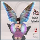 :: C.K Butterfly Wing Bento ::