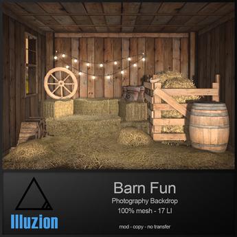 illuZion - Barn Fun Backdrop