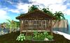 Suri Island Paradise(82LI,35x31)