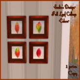 ~SD~ Fall Leaf Collage ~ Colors