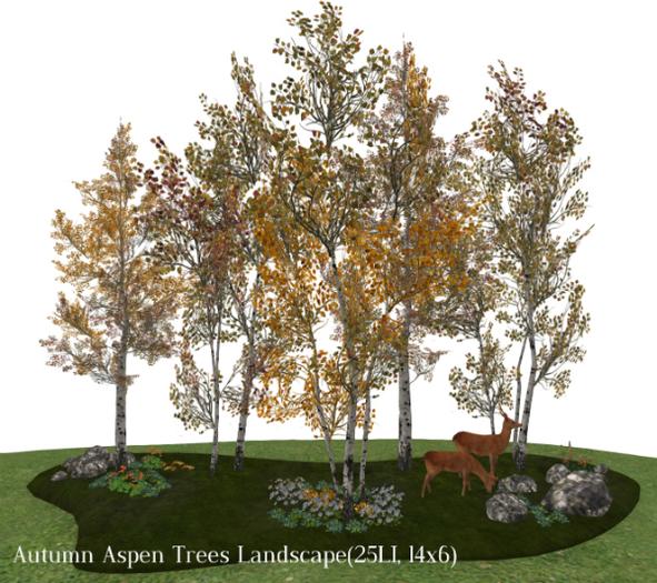 Autumn Aspen Trees Landscape(25LI, 14x6)