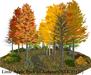 Little Apple Park in Autumn(76LI, 17x17)