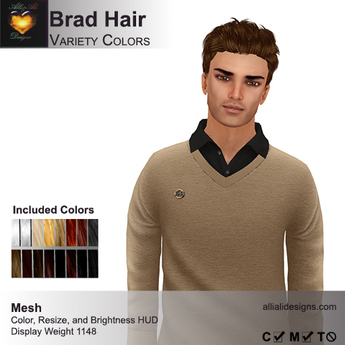 A&A Brad Hair Variety Colors V2, short mesh mens hairstyle