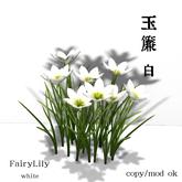 *N*Tamasudare Fairy Lily wht<AD>