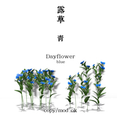 *N*Tsuyukusa Dayflower blue<AD>
