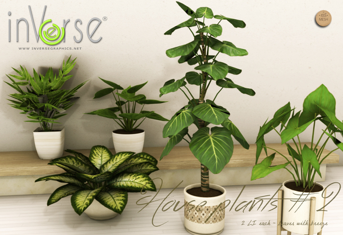 inVerse® MESH - House plant set vol. 2