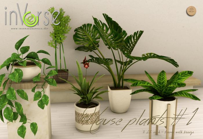 inVerse® MESH - House plant set vol. 1