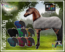 Plaid Lovers - Teegle Light Horse