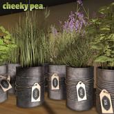 :CP: Tin Can Herbs - ALL