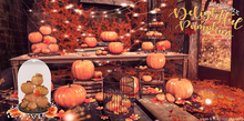 DISORDERLY. / Delightful Pumpkins / Dome