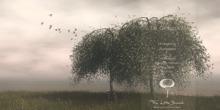 Ginkgo Tree v2 Animated 4 Seasons