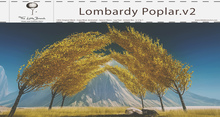 Lombardy Poplar v2 Animated 5 Seasons