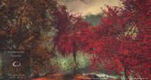 Big Red Maple Tree Animated 4 Seasons