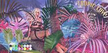 DISORDERLY. / Tropic Love / Palm